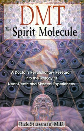 Drugs, NDEs, and the Mystical Psyche